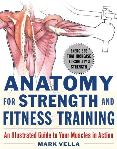 Anatomy-for-Strength-and-Fitness-Training-An-Illustrated-Guide-to-Your-Muscles-in-Action-0