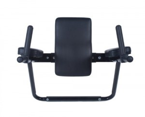 Ultimate-Body-Press-Wall-Mounted-Dip-Station-with-Vertical-Knee-Raise-0