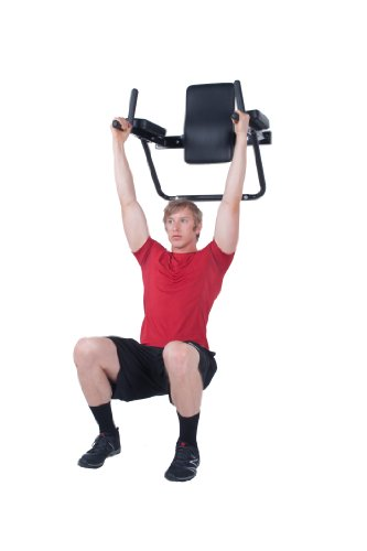 Ultimate Body Press Wall Mount Dip Station With Vertical